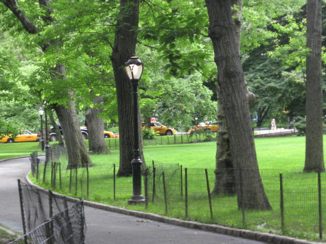 CENTRAL PARK EAST GREEN (4)