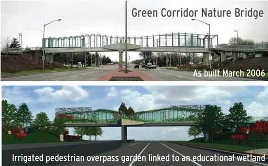 canada-green-corredor