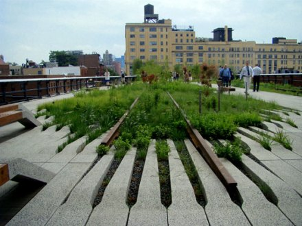 highlinegrass