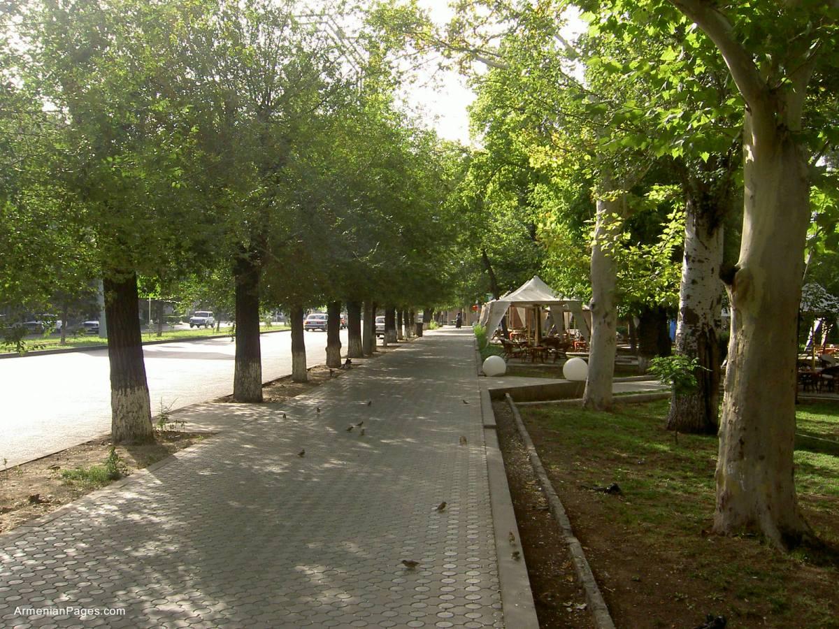 As Calçadas Merecem Projeto ~ Pedra Miracema Jardim