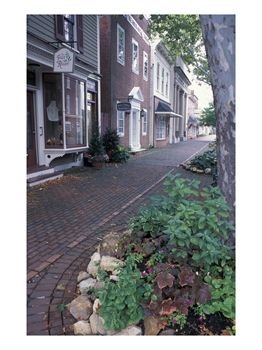 Brick-Sidewalks-in-the-Historic-District-of-Chestertown-Maryland-USA-Photographic-Print-C12224588