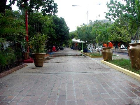 Margarita 685
